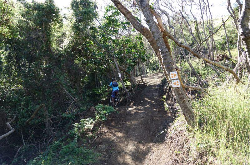Nouveauté au Domaine de Déva : la piste VTT N°11 verte de niveau facile