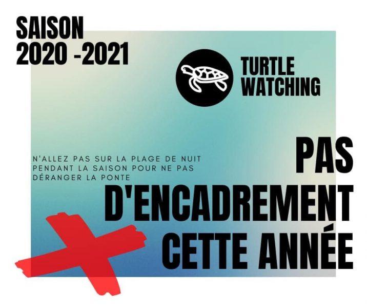 Turtle watchin , observation des tortues ne sera pas reconduit cette année 2020