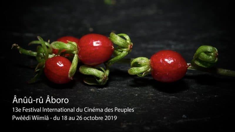 Le Domaine de Déva et al commune de Bourail accueillent le 13ème édition du Festival cinématographique'Ânûû-rû Âboro avec la projection de deux documentaires à la Maison de Déva