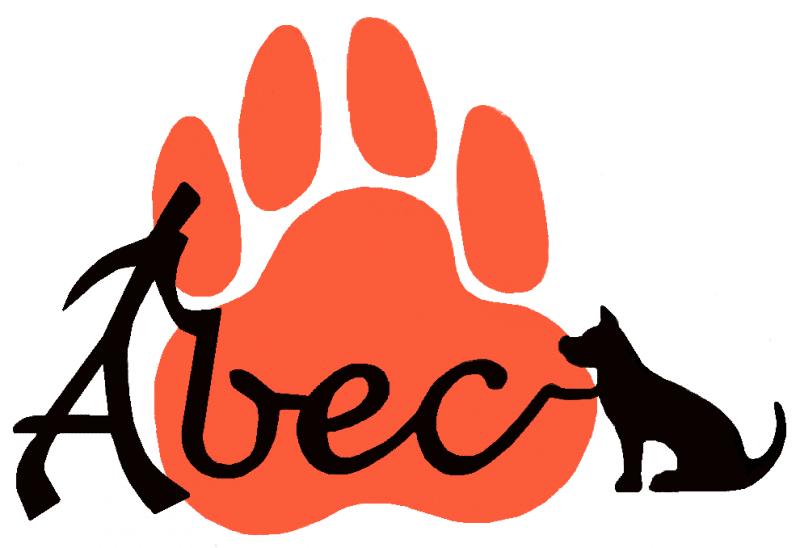 Randonnée avec chiens sur le Domaine de Déva à Bourail