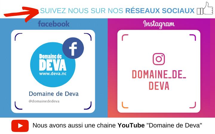 Le Domaine de Déva est son actualité, ses nouveauté et évènnements sont présents sur les réseaux sociaux Youtube, Instagram et Facebook.